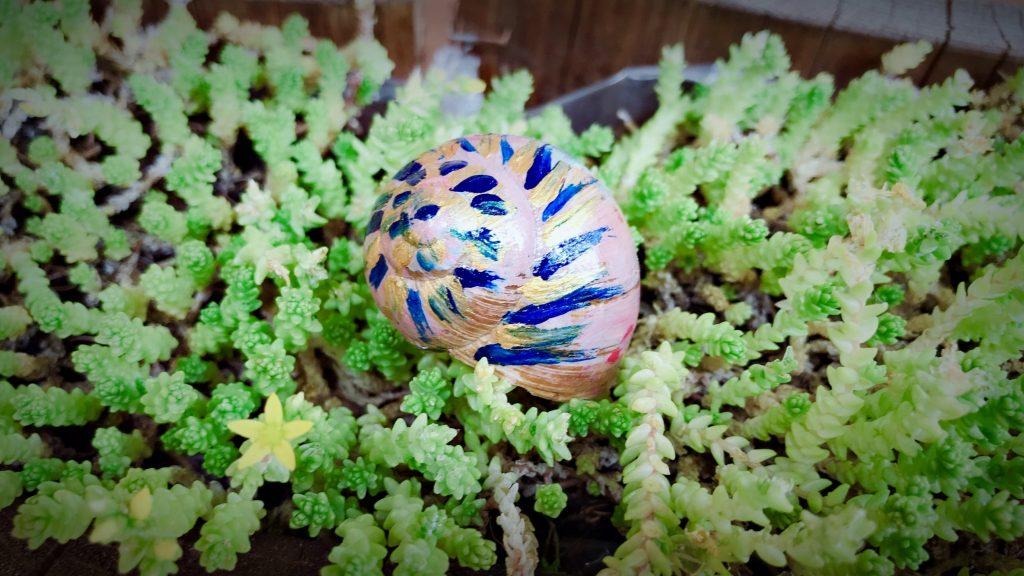 peinture coquille escargot